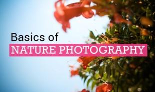 photography3